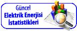 ELEKTRİK ENERJİSİ İSTATİSTİKLERİ